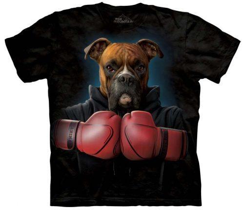 Boxer Rocky Shirts