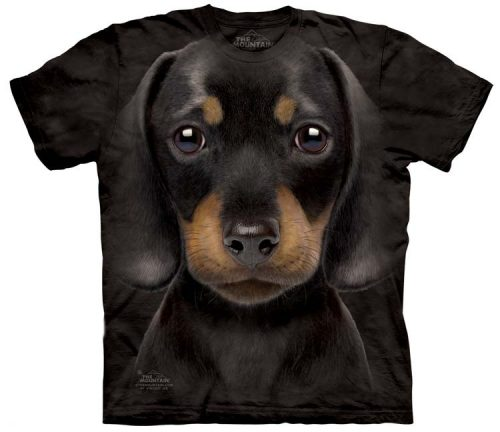 dachshund-puppy-shirts