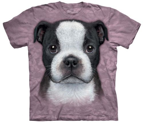 boston-terrier-puppy-shirts