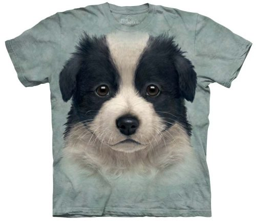border-collie-puppy-shirts