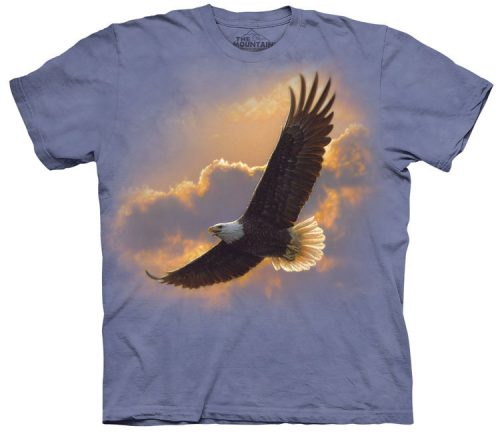 Soaring Eagle Spirit Shirt